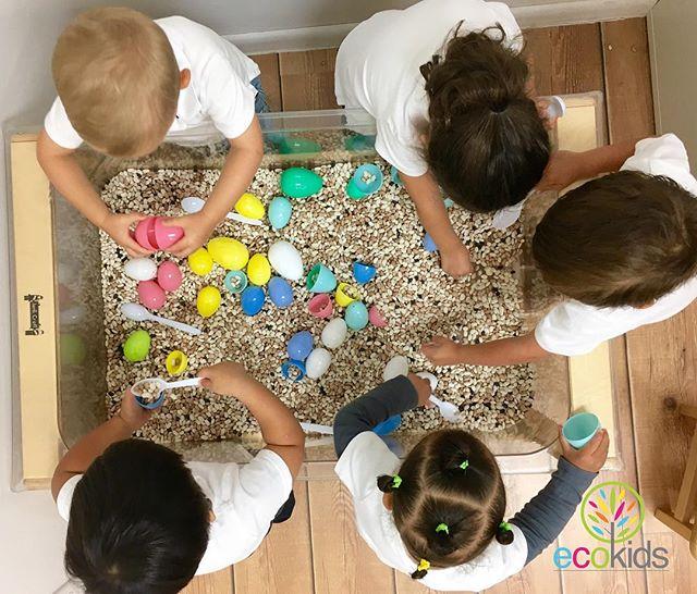 #tbt Sensory Play ~ #easter #activities #fun #sensoryplay #kids #iamecokids #future (954)344.4220 ~