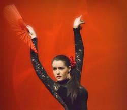 Flamenco Private Lessons