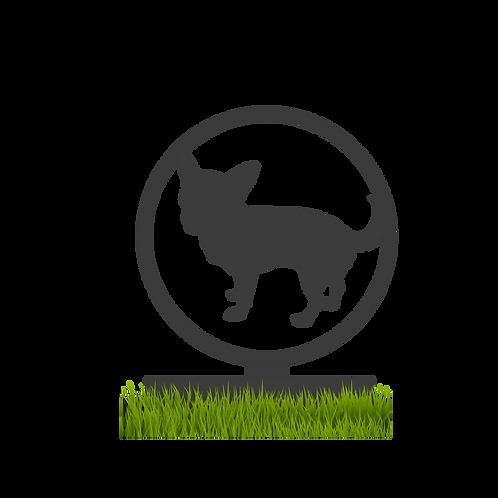 Stèle - Chihuahua -2