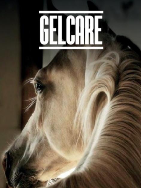 GEL CARE- Horse Feed
