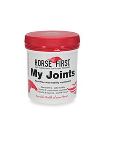 Horse First MY JOINTS Articulations