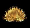 lotus new.png