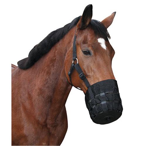 Panier pour cheval avec licol