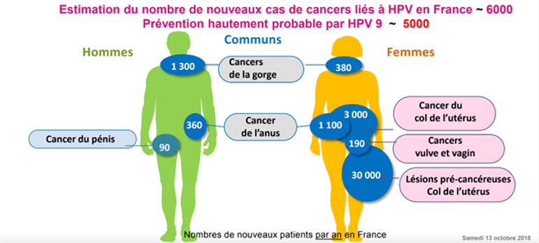 infographie cas cancers.png