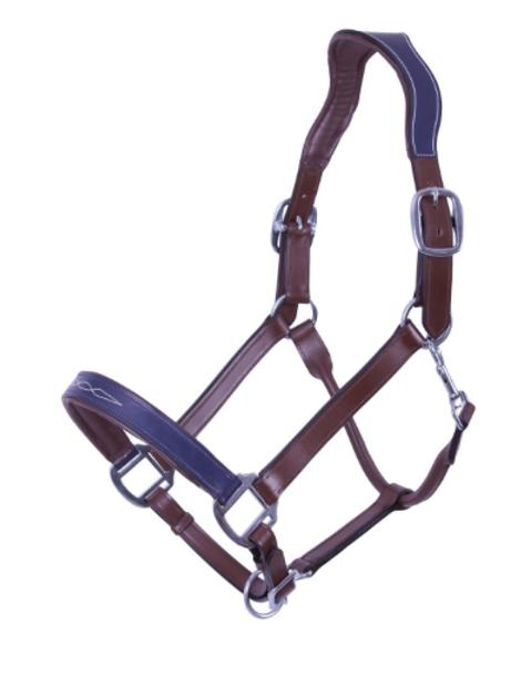Licol cuir SHIVA -anatomique