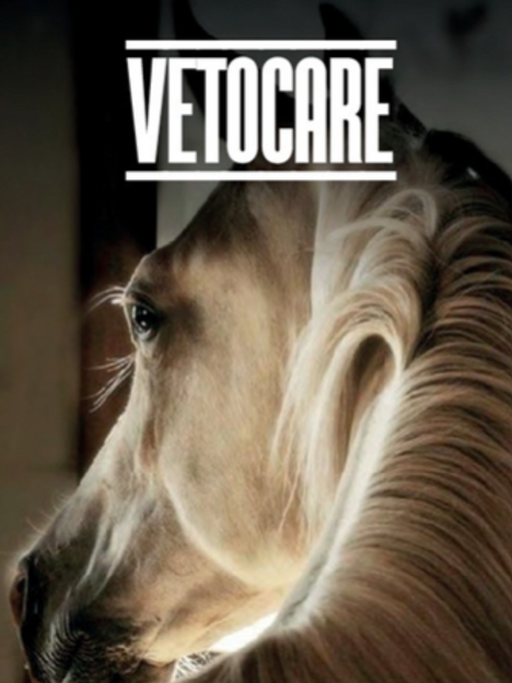 VETOCARE- HorseFeed