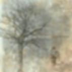Dirt Road Opera - Rattlin' Bones.png