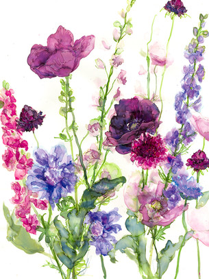 Larkspur, Poppies and Scabious