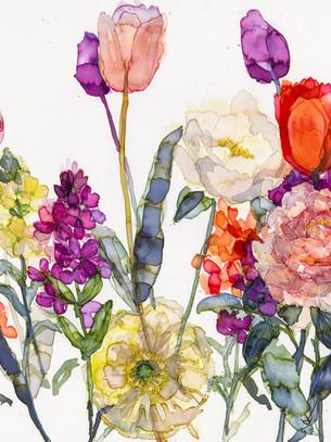 Tulips, Wallflowers and Icelandic  Poppy