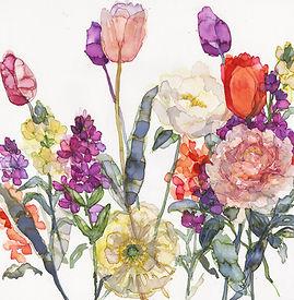 273 Tulips, Wallflowers and Icelandic Po