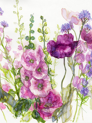 Pink Hollyhock with mixed Poppies