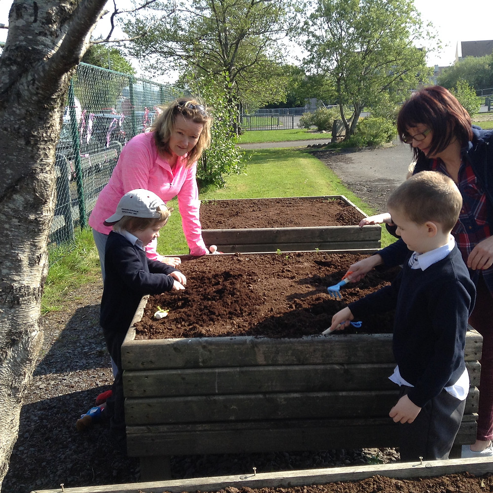 Junior explorers were busing planting carrots in the lovely May sunshine.