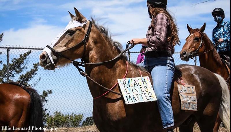 HorseProtestSignsEllieLeonard.jpg