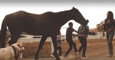 kids walking the horse.jpg