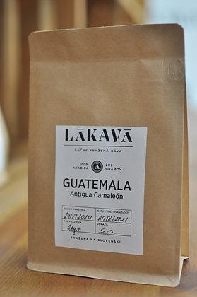 GUATEMALA, Antigua Camaleón