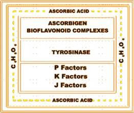 vitamin c complex.jpg