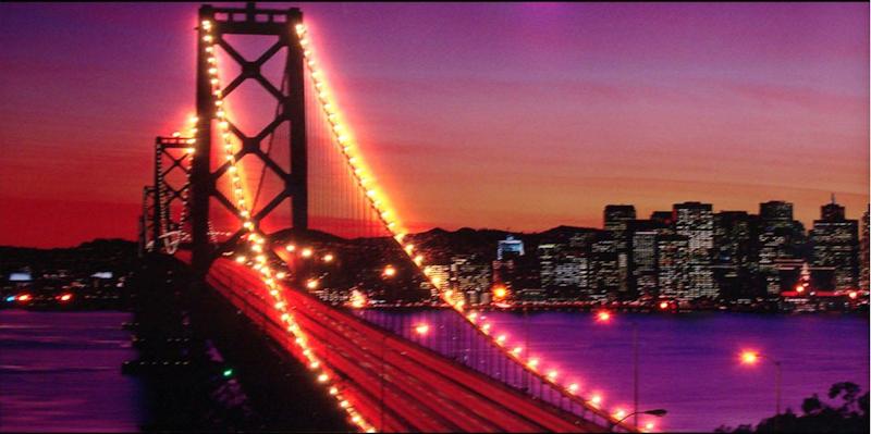Poster lumineux : LED à piquer