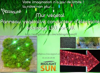éclairage sans fil : mur végétalisé, tableau végétalisé lumineux
