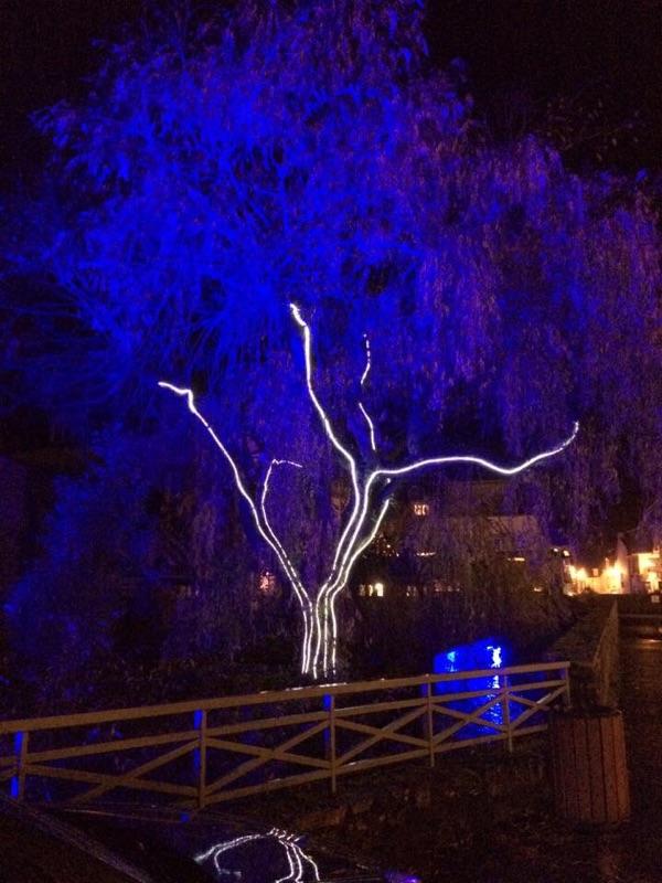 illumination fibre optique diffusant