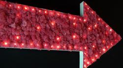 panneau végétalisé éclairage LED sans fil 9