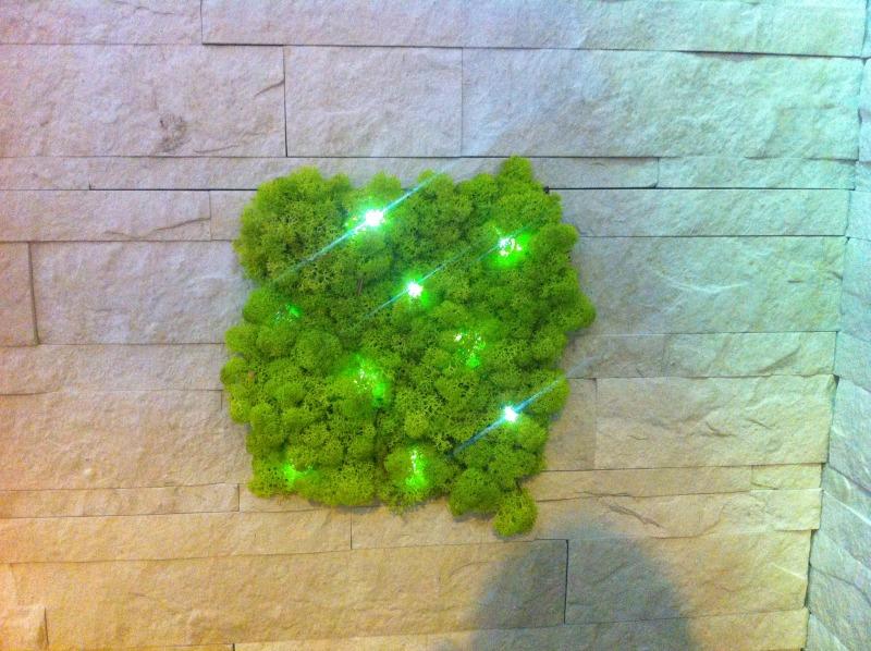 panneau végétalisé éclairage LED