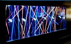 Décoration vitrine fibre optique