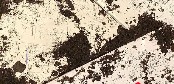 Seale-Dust.jpg