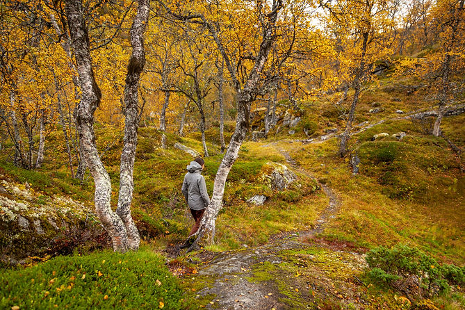 2018_Norway_Mountains_Sept25_PS-7984_sma