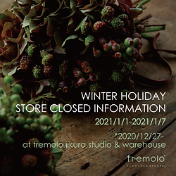 tremolo_banner_winter holiday_アートボード 1