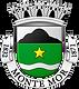 Brasão_Município_de_Monte_Mor.png