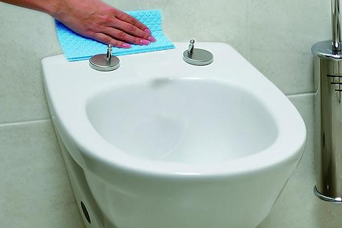 Quick Release Toilet Seat