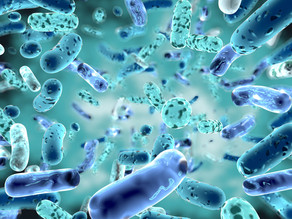 Supercharge your gut health with Cannabinoids