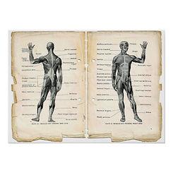 de_vintage_paginas_van_het_boek_van_de_a