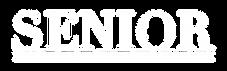 SSG+Logo+Correct.png