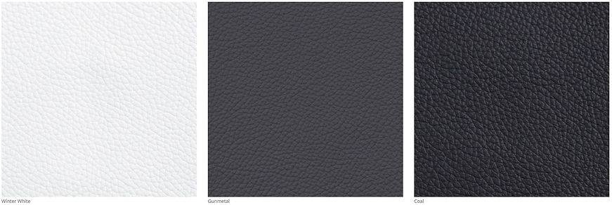 Luxe Leather I 3.JPG