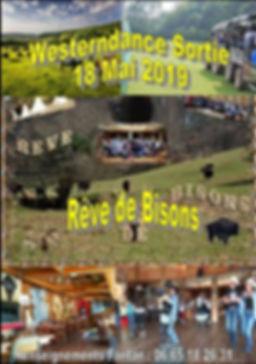 SORTIE REVE DE BISONS.jpg