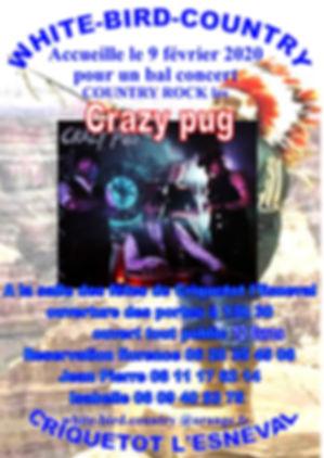 Affiche Crazy pug.jpg