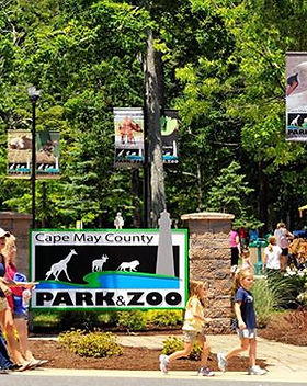Cape May Zoo.jpg