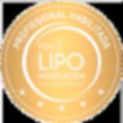 certificado_lipomodelagem.png