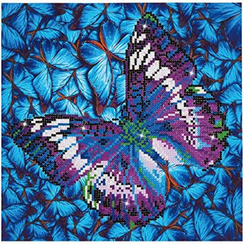 Diamond Dotz - Flutter by mauve