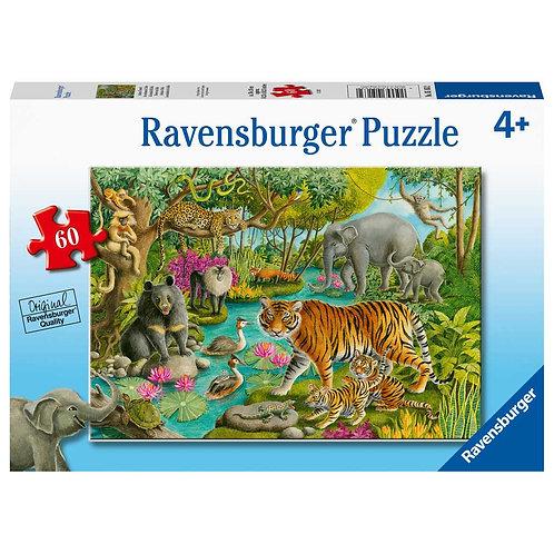 60 Pcs - Ravensburger - Animals of india