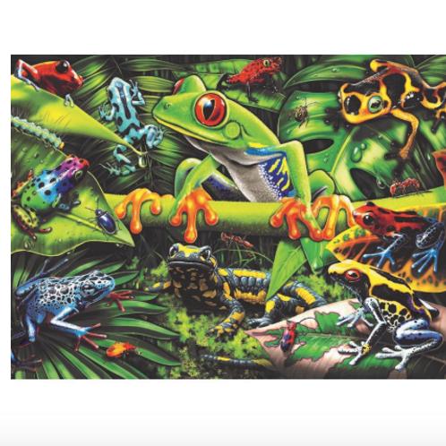 35 Pcs - Étonnants amphibiens
