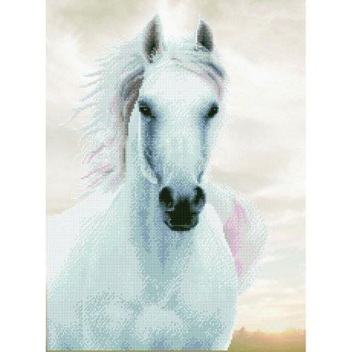 Diamond Dotz - Imperial Stallion