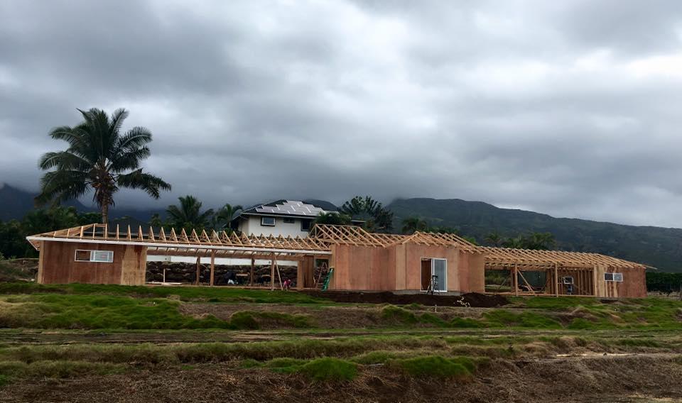 aviary build