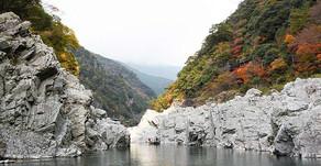 エバー航空が台湾業者の四国ファムトリップを実施。知られざる観光資源を発掘