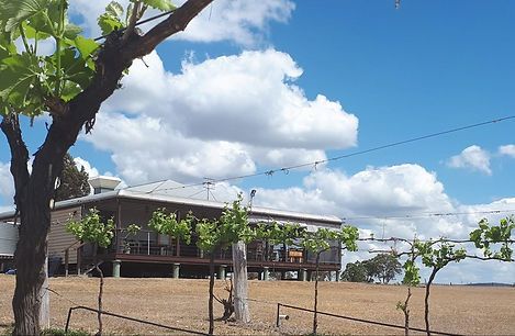 barambah cellars back view.jpg