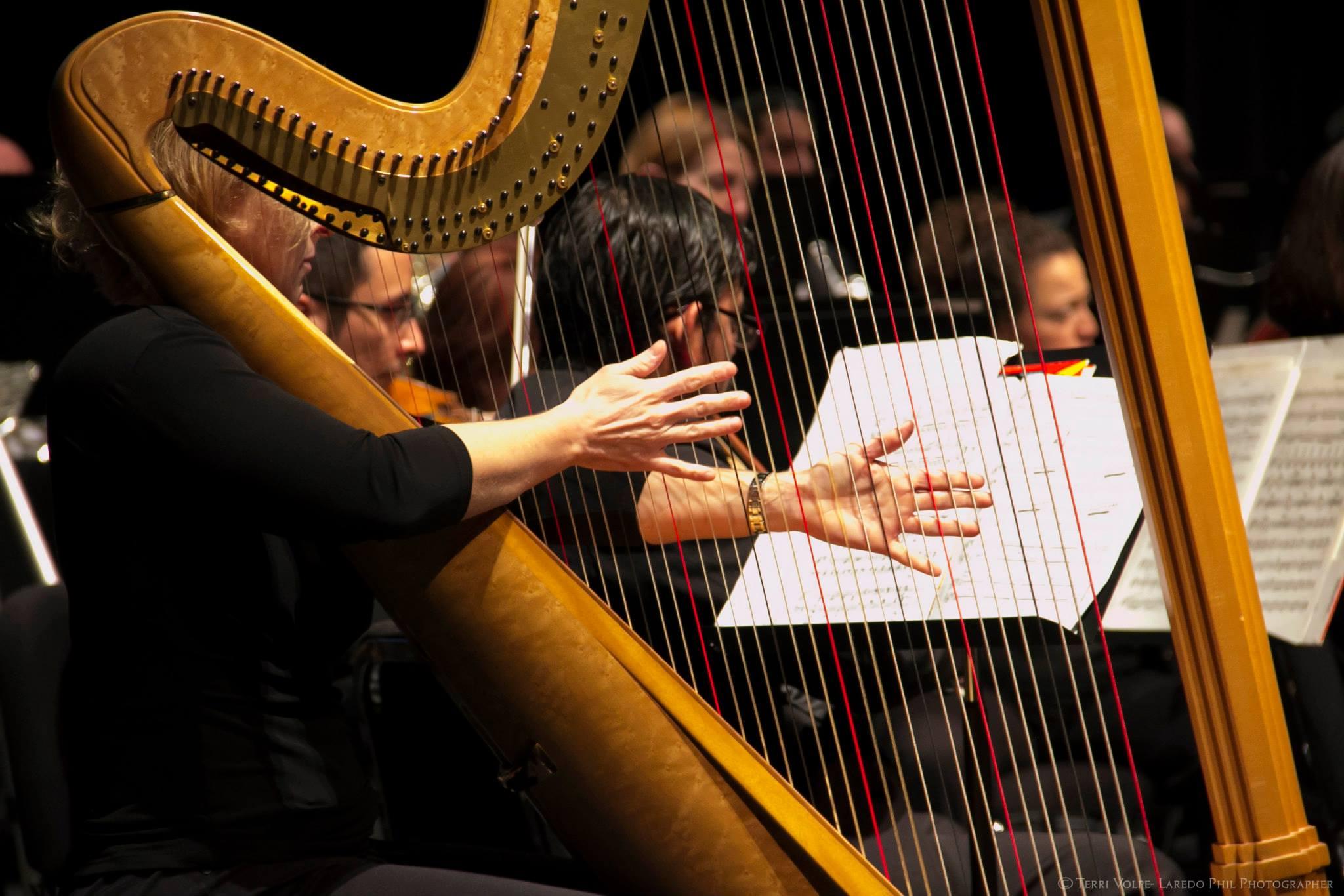 Laredo Phil harp pic