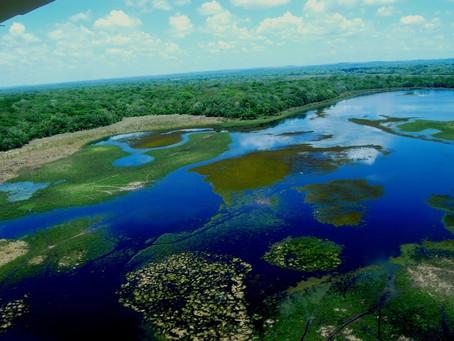Pantanal - Dicas de Temporadas e Equipamentos de Pesca
