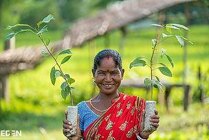 woman holding trees.jpg