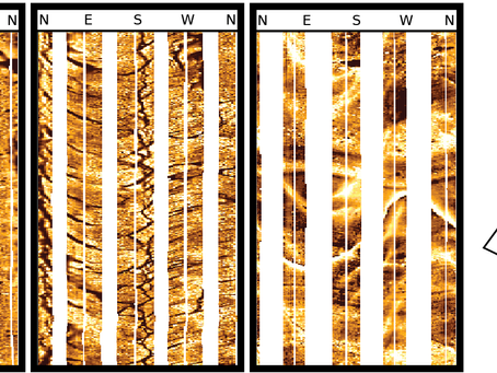 Geometric Sample Bias in Borehole Image Log Data
